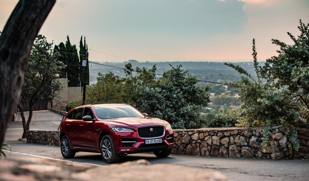 Jaguar, Jaguar F-Pace, F-Pace 20d, F-Pace , Roarke Bouffe, Torquing Cars